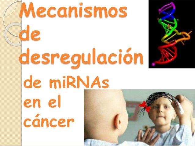 Mecanismos de desregulación de miRNAs en el cáncer