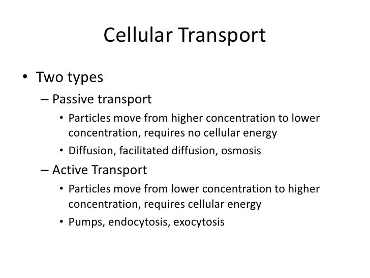 Bio cellular transport