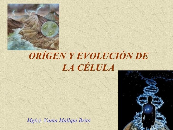 ORÍGEN Y EVOLUCIÓN DE      LA CÉLULAMg(c). Vania Mallqui Brito