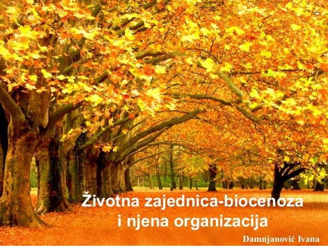 Životna zajednica-biocenoza i njena organizacija Damnjanović Ivana