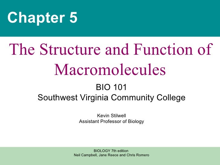 Chapter 5 The Structure and Function of Macromolecules BIO 101 Southwest Virginia Community College Kevin Stilwell Assista...