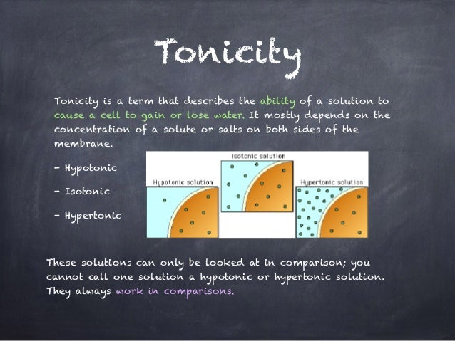 Tonicity And Osmosis Worksheet Biology 101 Answers - Nidecmege