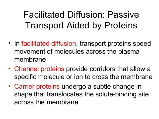 which of the following statements is true about passive transport