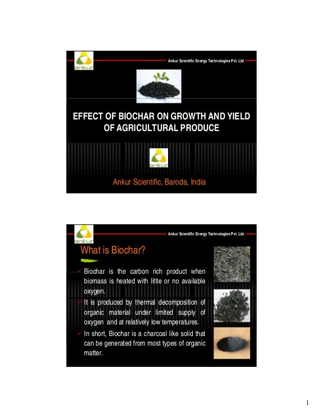 Ankur Scientific Energy Technologies Pvt. Ltd.  EFFECT OF BIOCHAR ON GROWTH AND YIELD OF AGRICULTURAL PRODUCE  Ankur Scien...