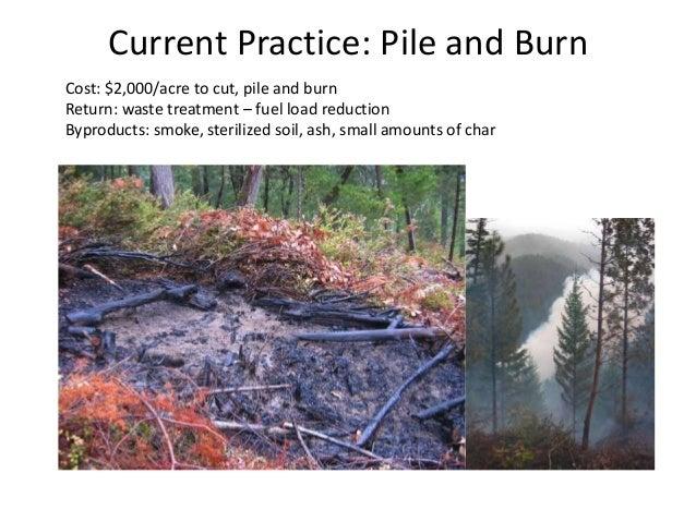 Biochar burn school results Slide 2