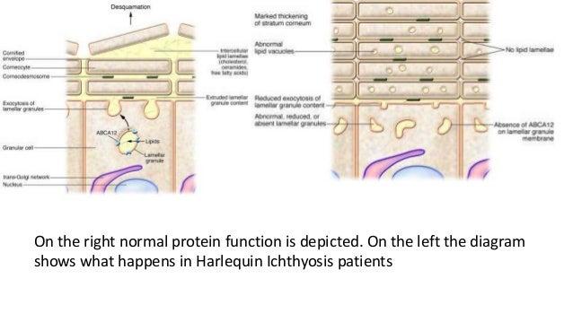 biochem case study  9