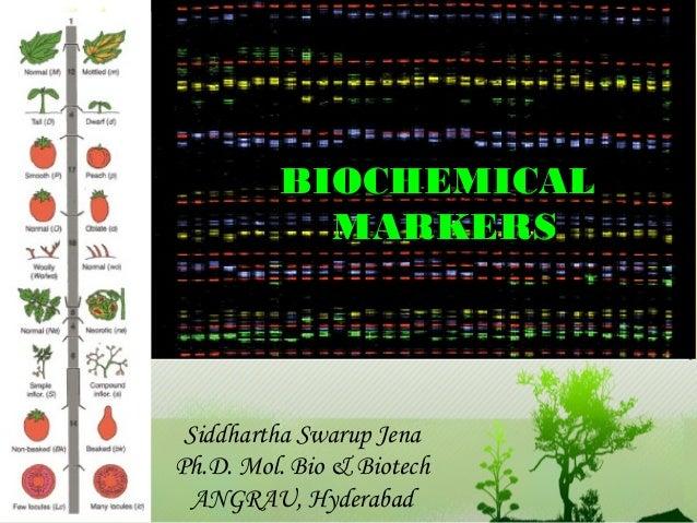 BBIIOOCCHHEEMMIICCAALL  MMAARRKKEERRSS  Siddhartha Swarup Jena  Ph.D. Mol. Bio & Biotech  ANGRAU, Hyderabad