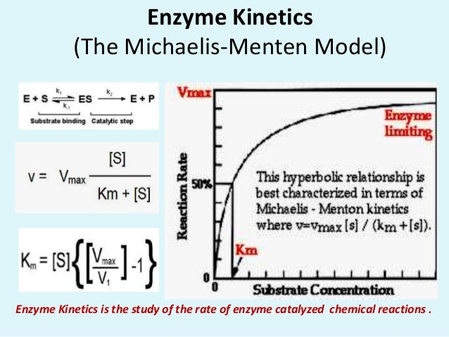 Catalysts enzymes