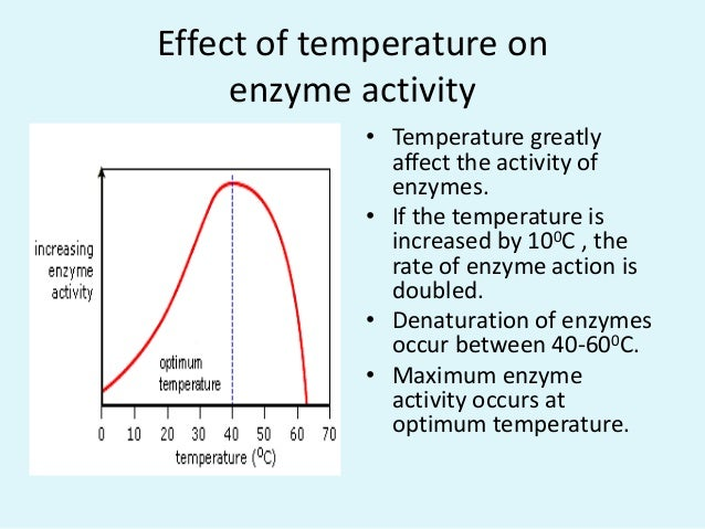 effect of temperature on the activity Factors affecting catalytic activity of enzymes temperature as the temperature rises, reacting molecules have more and more kinetic energy this.