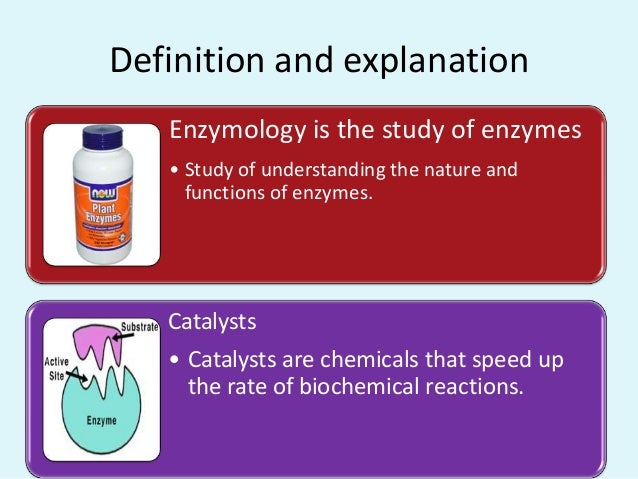 Biochemical principles of enzyme action Slide 3