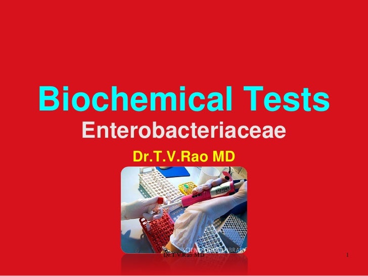 Biochemical Tests  Enterobacteriaceae      Dr.T.V.Rao MD         Dr.T.V.Rao MD   1