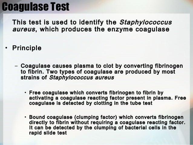 biochemical test for staphylococcus aureus pdf