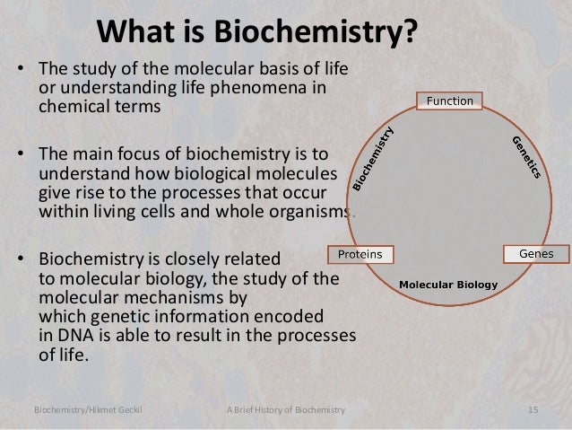 biochemistry: a brief history of biochemsitry, Human Body