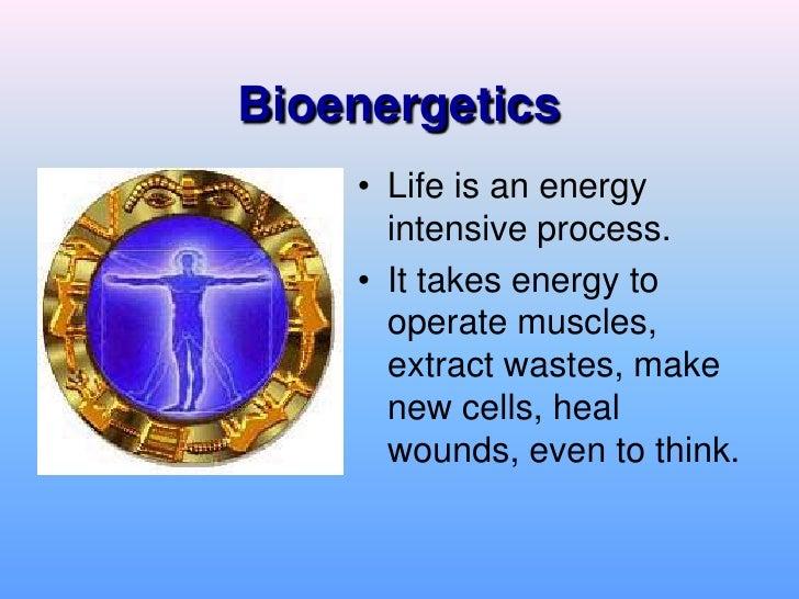 Biochemistry Bioenergetics