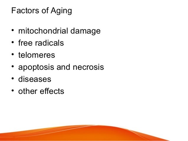 Factors of Aging • mitochondrial damage • free radicals • telomeres • apoptosis and necrosis • diseases • other effects