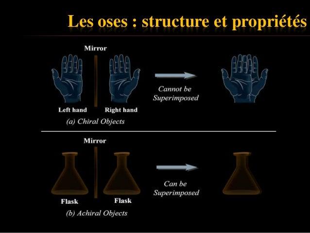 Biochimie des glucides, UMMTO Slide 3