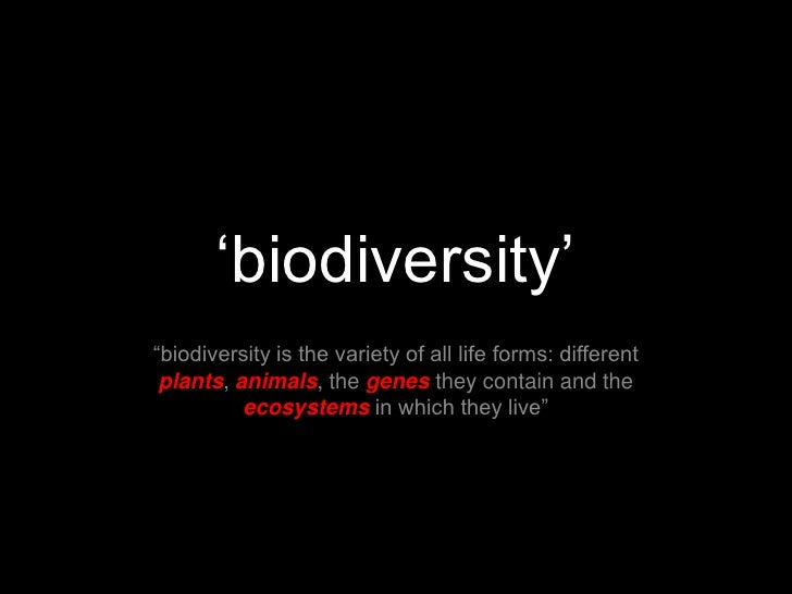 """'biodiversity'<br />""""biodiversity is the variety of all life forms: different plants, animals, the genes they contain and ..."""