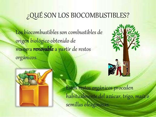 Q Son Los Lemures Biocombustible