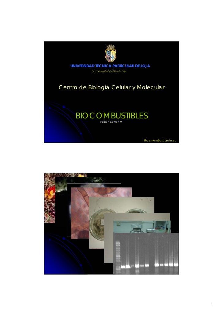 UNIVERSIDAD TÉCNICA PARTICULAR DE LOJA               La Universidad Católica de Loja     Centro de Biología Celular y Mole...