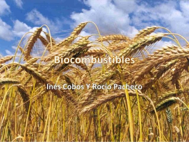 ¿Qué son los biocombustibles?¿Qué son los biocombustibles?• Un biocarburante o biocombustible es una mezcla de hidrocarbur...