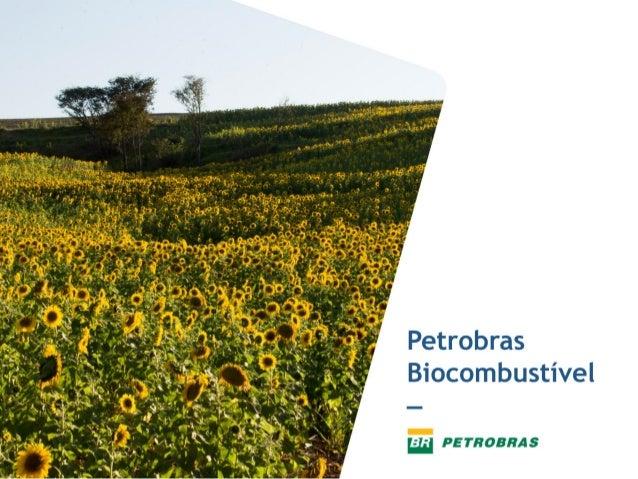 Apresentação Petrobras - Biocombustíveis