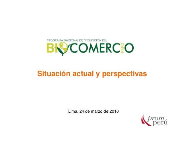 Situación actual y perspectivas Lima, 24 de marzo de 2010