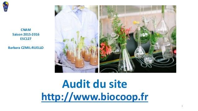 Audit Du Site Biocoopfr CNAM Saison 2015