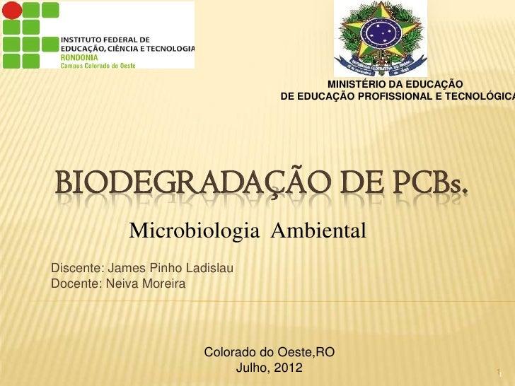 MINISTÉRIO DA EDUCAÇÃO                                    DE EDUCAÇÃO PROFISSIONAL E TECNOLÓGICABIODEGRADAÇÃO DE PCBs.    ...