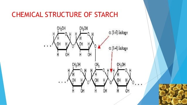 the main structural difference between starch