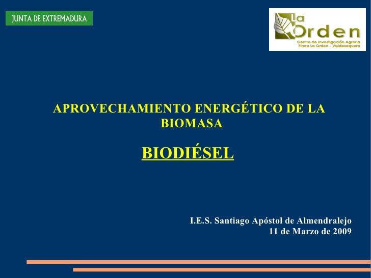 APROVECHAMIENTO ENERGÉTICO DE LA BIOMASA BIODIÉSEL I.E.S. Santiago Apóstol de Almendralejo 11 de  Marzo  de 2009