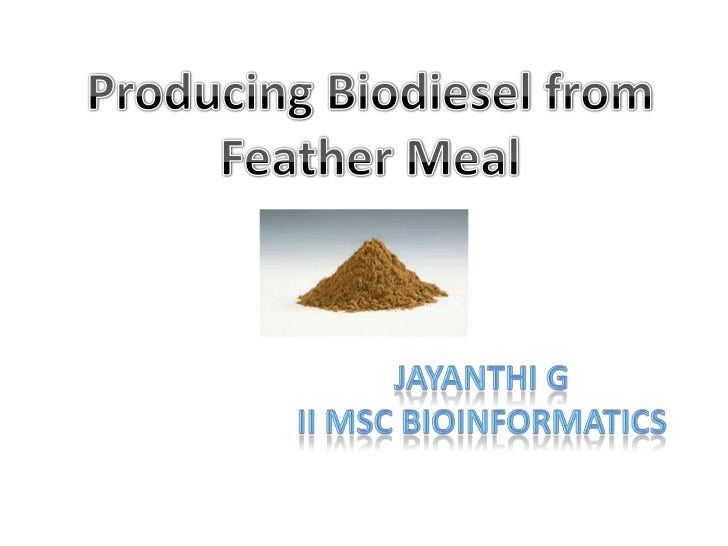 Producing Biodiesel from Feather Meal<br />Jayanthi G<br />II MSc bioinformatics<br />