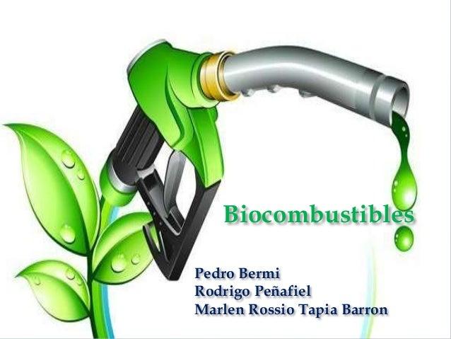 Pedro Bermi Rodrigo Peñafiel Marlen Rossio Tapia Barron Biocombustibles