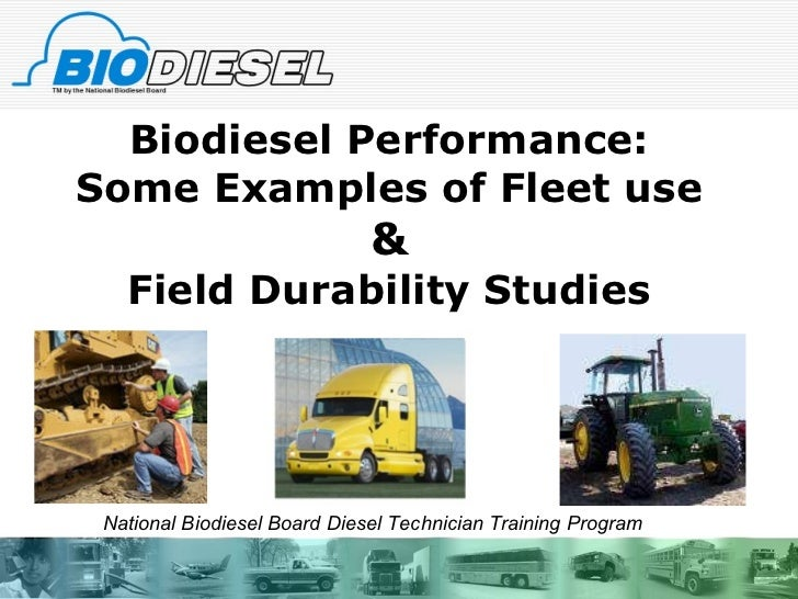Biodiesel Incorporated - Term Paper