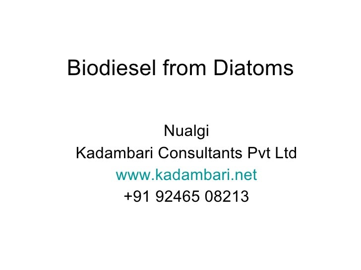 Biodiesel from Diatoms Nualgi Kadambari Consultants Pvt Ltd www.kadambari.net +91 92465 08213