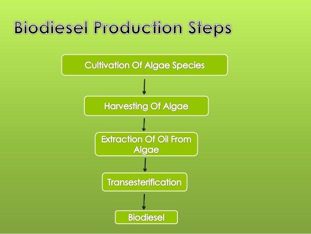 Benefits of Biodiesel