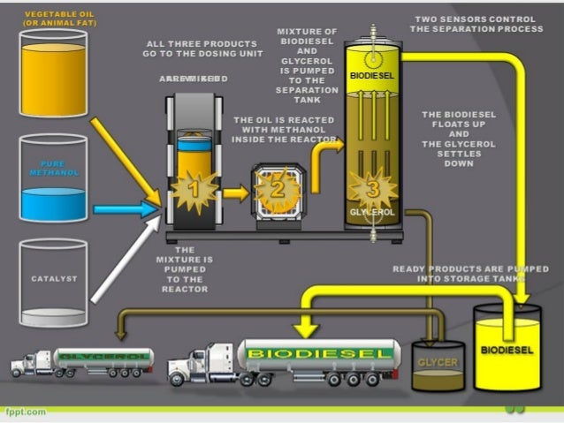 Biodiesel Production In Middle East Opportunities And