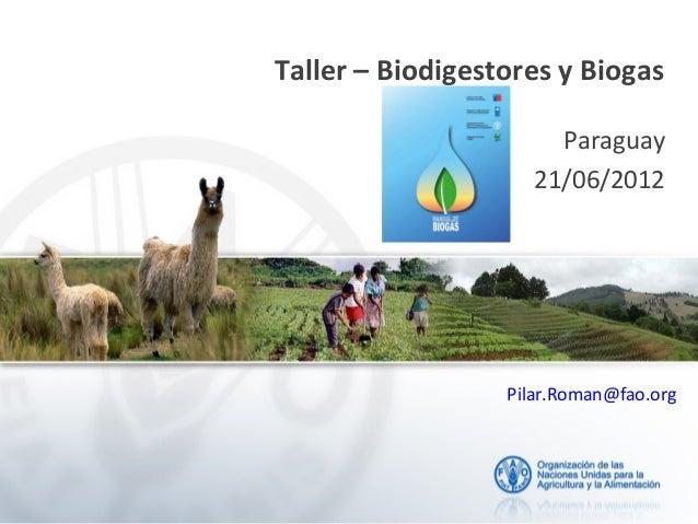 Taller – Biodigestores y Biogas Paraguay 21/06/2012 Pilar.Roman@fao.org