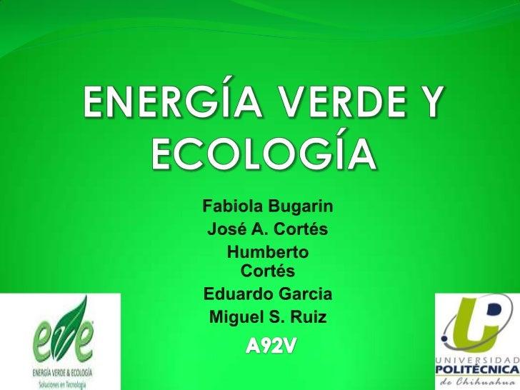 Razón y justificación del proyecto El   principal   objetivo   del   proyecto   es   la  comercialización del biodigestor...
