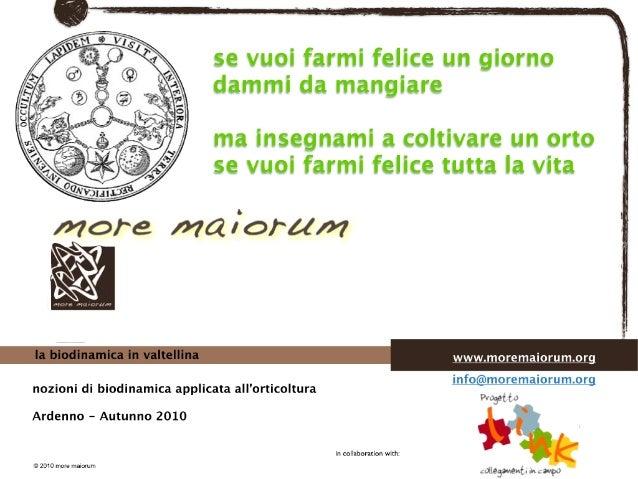 Biodinamica e orticoltura, Progetto Link