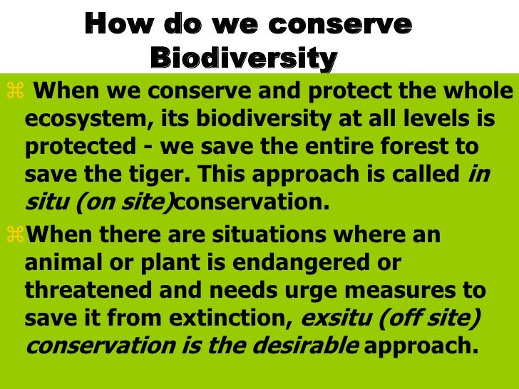 the importance of conserving biodiversity This means that the importance of biodiversity and natural processes in providing policies that conserve more biodiversity are also promoting higher overall human.
