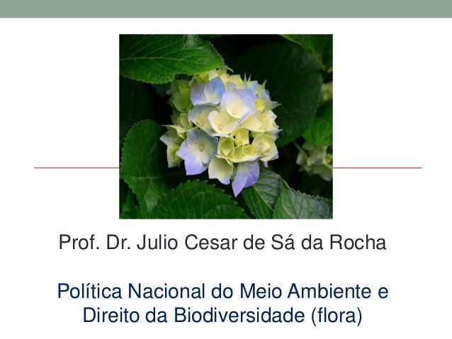Prof. Dr. Julio Cesar de Sá da Rocha Política Nacional do Meio Ambiente e Direito da Biodiversidade (flora)