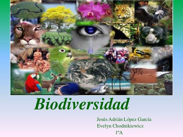 Biodiversidad        Jesús Adrián López García        Evelyn Chodnikiewicz                1ºA