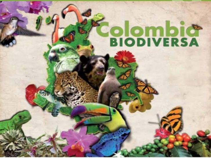 INTRODUCCIONEn la historia reciente, el cuidado del medio ambiente es un ejeprincipal, el cual tiene una ubicación priorit...