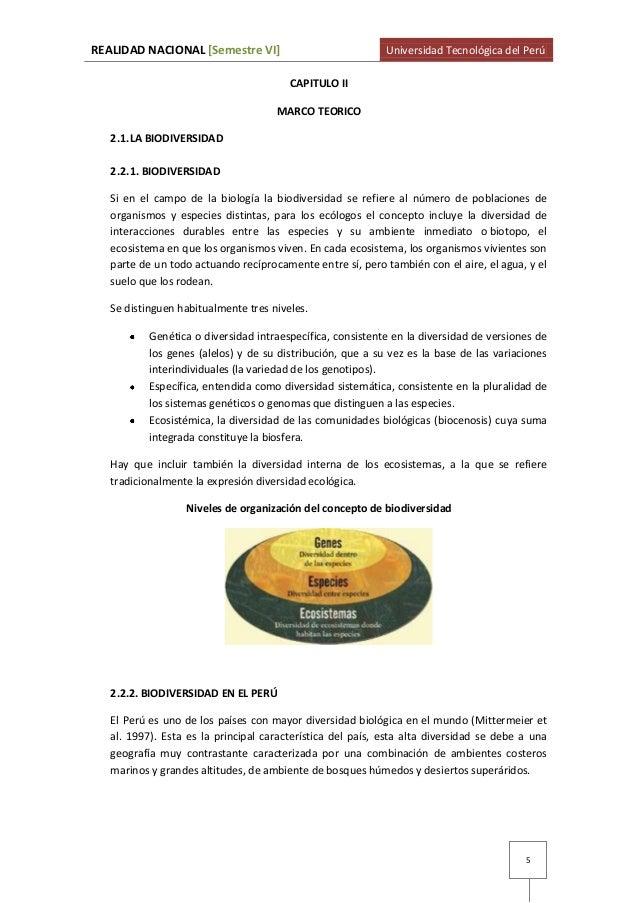 Bonito Marcos Respetuosos Con El Ecosistema Elaboración - Ideas de ...