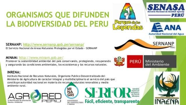 Biodiversidad Del Peru Y Su Importancia 2015