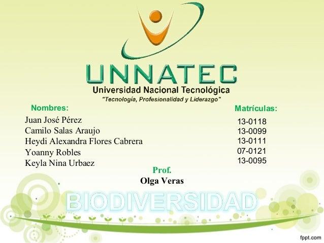 Nombres: Matrículas:Juan José PérezCamilo Salas AraujoHeydi Alexandra Flores CabreraYoanny RoblesKeyla Nina Urbaez13-01181...