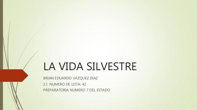 I_42_BEVD_01 Slide 3