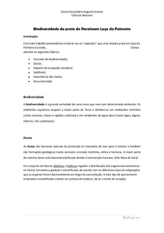 Escola Secundária Augusto Gomes Ciências Naturais 1 | P á g i n a Biodiversidade da praia do Paraísoem Leça da Palmeira In...