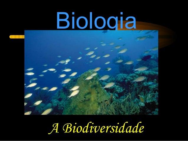 Biologia A Biodiversidade
