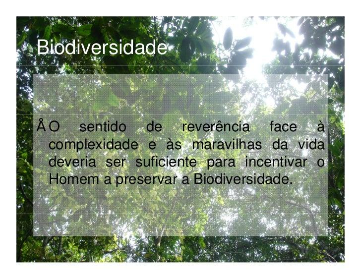 Níveis de Biodiversidade Componente genética: variabilidade dentro de uma espécie. Componente taxonómica: variabilidade en...